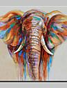 Pictat manual Animal / Pop Picturi de ulei,Modern Un Panou Canava Hang-pictate pictură în ulei For Pagina de decorare