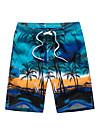 Bărbați Mărime Plus Size Larg Pantaloni Chinos Pantaloni Scurți Pantaloni,Peteci Boho Activ Imprimeu Bloc de CuloareCasul/Zilnic Plajă