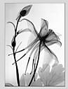 Peint a la main A fleurs/Botanique Panoramique Verticale,Moderne Classique Un Panneau Toile Peinture a l\'huile Hang-peint For Decoration