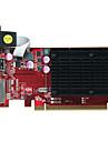 Dataland Video Carte graphique 625MHz/1334MHz1GB/64 bits GDDR3