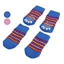 Psi Cipele i čizme / Čarape Plav / Narančasta Proljeće/Jesen PamukPas Cipele