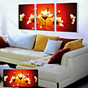 Protezala Canvas Art Cvjetni Žuti Lotus Set od 3