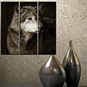 キャンバス地3のアート動物ウルフセットを印刷
