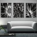 Cvjetni / Botanički Uokvireno platno / Uokvireni set Wall Art,PVC Bijela Stalak nije uključen s Frame Wall Art