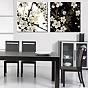 Rastegnut Canvas Art Peach Blossom Set od 2