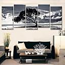 Reprodukce na plátně Art Black And White stínu stromů Sada 5