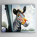ulje na platnu moderni životinja zebre ručno oslikana platna s razvučena uokvirena