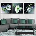 e-HOME® protáhl pod vedením plátně umění zelená květina blesku efekt LED bliká optické vlákno tiskovou sadu 3