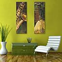E-home® pruži platnu si glazbala ukrasne slikarstvo set 2