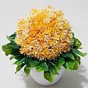rostliny ve váze, jasné květiny