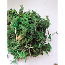 箱庭の装飾緑の苔(1PCS)