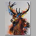 Ručno oslikana Životinja Horizontalno,Moderna Jedna ploha Platno Hang oslikana uljanim bojama For Početna Dekoracija