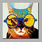 single moderní abstraktní čistá ruka kreslit připraven pověsit dekorativní s brýlemi kočka olejomalba